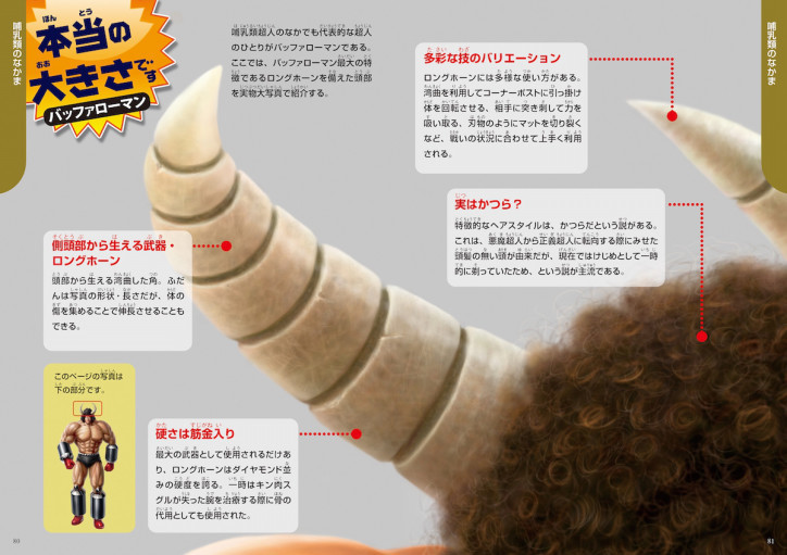 筋肉1.jpg
