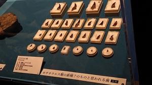 はにかみ日記記事画像2.JPG
